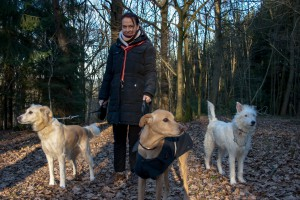 Susanne with our Dogs - Samson, Bruno , Assel