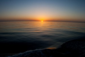 Sunrise -Fury Shoals